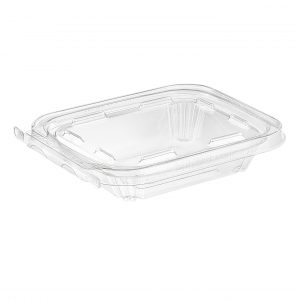 Clear Hinged Take-Out Container, TS06 – 60/CASE